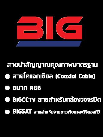 สายนำสัญญาณ BIG